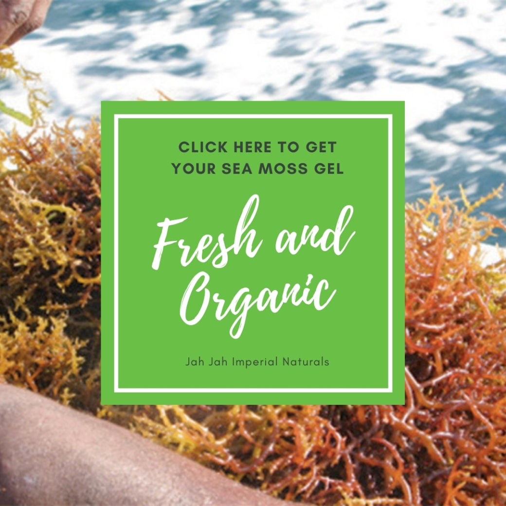 Get your Sea Moss Gel Here
